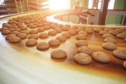 Automatic bakery production line with sweet cookies on conveyor belt equipment machinery in confectionary factory workshop, industrial food production.