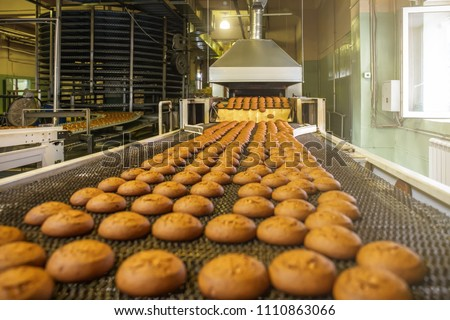 Automatic bakery production line with sweet cookies on conveyor belt equipment machinery in confectionary factory workshop, industrial food production