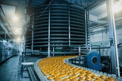 Automatic conveyor belt with cakes, baking process in confectionery factory. Food industry, toned