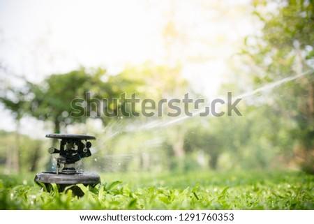 Lawn Sprinkler In Action Garden Sprinkler Watering Grass
