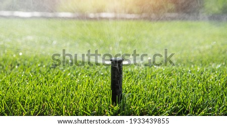 Automatic Garden Sprinkler. Backyard Watering Technology. Stock foto ©
