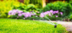 automatic sprinkler system watering the lawn