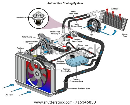 Automotive Cooling System infographic diagram showing process and all parts included radiator hoses coolant flow thermostat fan tank and air flow for mechanic and road traffic safety science education
