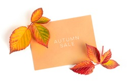 Autum Sale. Discount banner or flyer design template with vibrant autumn leaves, overhead shot on a white background with copy space