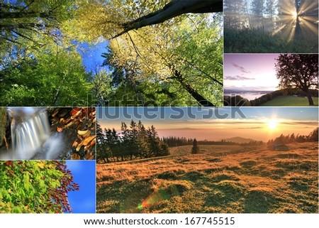 autumn - Shutterstock ID 167745515