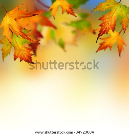 Autumn #34923004