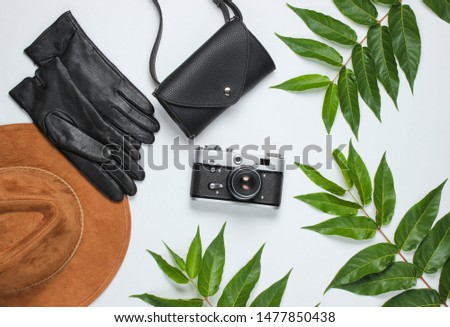 Autumn accessories, retro camera on a white background with green leaves. Felt hat, leather gloves, bag. Top view