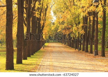Autumn alley in the park
