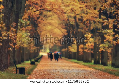 autumn alley in the park / autumn walk in the city park, weekends alone. The concept of calm and autumn freshness among trees and branches with yellow leaves #1175888902