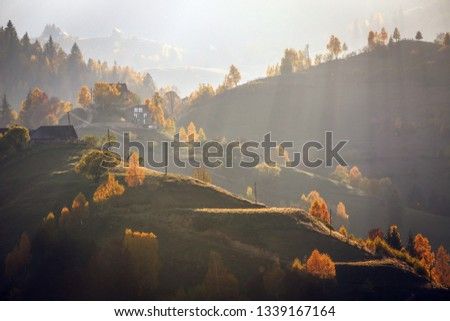Autumn alpine landscape, alpine village with spectacular gardens and high snowy mountains in background near Bran, Magura, Transylvania, Romania.  #1339167164