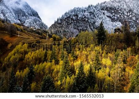 Autumn alpine landscape, alpine village with spectacular gardens and high snowy mountains in background near Bran, Magura, Transylvania, Romania. #1565532013