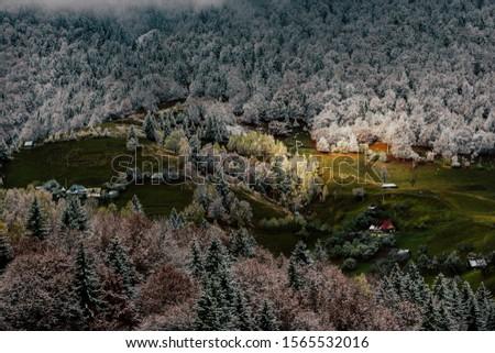 Autumn alpine landscape, alpine village with spectacular gardens and high snowy mountains in background near Bran, Magura, Transylvania, Romania. #1565532016