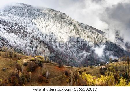 Autumn alpine landscape, alpine village with spectacular gardens and high snowy mountains in background near Bran, Magura, Transylvania, Romania. #1565532019