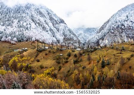 Autumn alpine landscape, alpine village with spectacular gardens and high snowy mountains in background near Bran, Magura, Transylvania, Romania. #1565532025