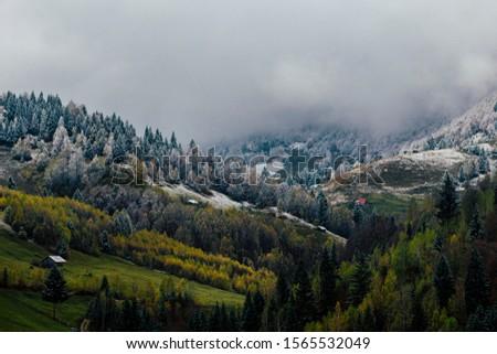 Autumn alpine landscape, alpine village with spectacular gardens and high snowy mountains in background near Bran, Magura, Transylvania, Romania. #1565532049