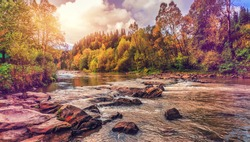 autumn amazing landscape. colorful trees  over the mountain river in the forest gloving in the sunlight. retro vintage style. instagram toning effect