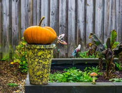 Autumn and halloween decorations, orange pumpkin on a vase in a garden, Seasonal holiday background