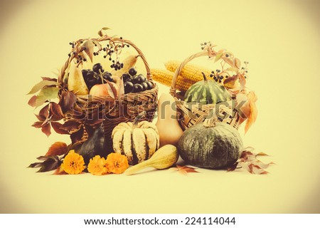 Autumn and Thanksgiving concept. Seasonal fruit and pumpkins in a basket,isolated. Instagram filter.