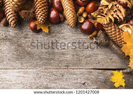 Autumn arrangement, concept still life with chestnuts, cones, acorns, leaves, bark on wooden background. Seasonal frame from autumn harvest. Flat-lay visualization with copy space. Table top view. #1201427008