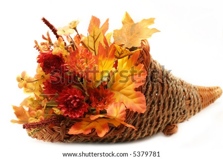 Autumn arrangement of dried flowers and leaves in wicker cornucopia