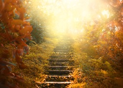 Autumn backdrop stairs sky. amazing mysterious road steps leads mystical world, fairytale path hides among yellow orange trees, magical October foggy art fantasy nature foliage garden bright abstract