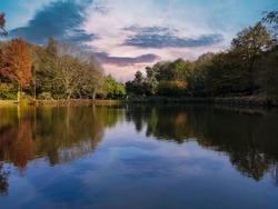 Autumn backgorund, Ataturk Arboretum, Colorful tree's reflection on lake in Autumn. Nature park istanbul, turkey