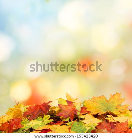 autumn background  #155423420