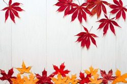 autumn background of fall leaves on the wooden board, top view;