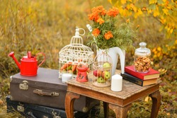Autumn background. Retro style things: candles, suitcases, watering can, the cell with the vegetables, marigold, old book in the autumn forest
