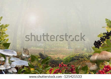 Autumn Background with beech wood, toadstools, berries and Grey Squirrel