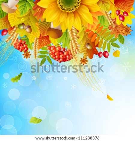 Autumn background with colorful leaves on sky background. Check my portfolio for vector version.