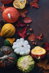 Autumn background with decorative pumpkin,  nuts and autumn leaves  on dark stone table, harvest still life composition, thanksgiving background