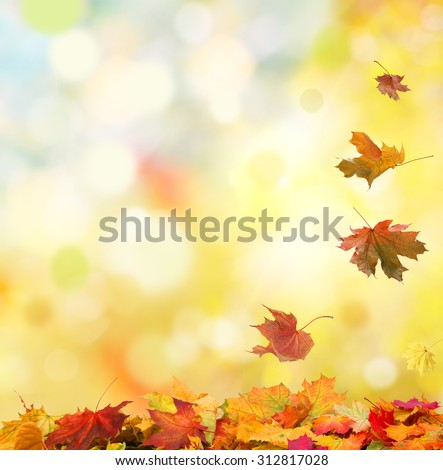 autumn background with falling leaves  #312817028