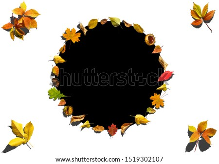 Autumn background with Hello Autumn letters and autumn nature flowers