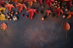 Autumn background with nuts, acorns and red autumn leaves  on dark stone table, harvest still life composition, thanksgiving background, space for text