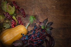 autumn background with pumpkin, viburnum branch with berries and fruits of wild grapes on a dark wooden background