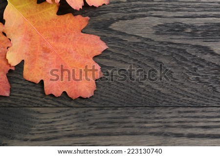 autumn background with red oak leaves on stained oak table, directly from above