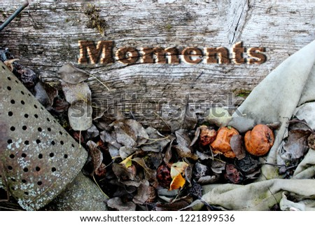 "Autumn background with the inscription ""Moments"" #1221899536"