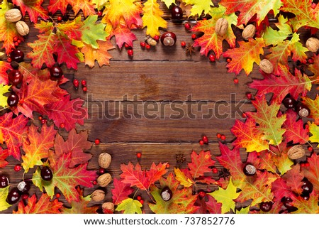 Autumn background with yellow, with bright leaves, pine cones, chestnuts and berries. Frame autumn harvest on seasoned wood with free space. The layout offers and seasonal holiday card #737852776