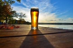 autumn beer backlit afternoon sun under blue sky, landscape