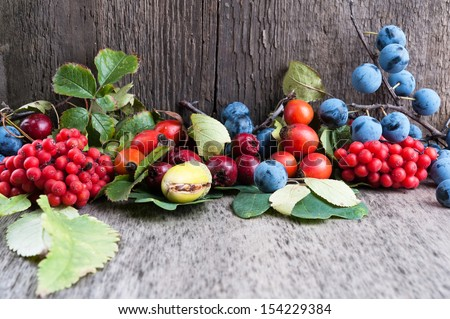 Autumn berries on old wooden surface