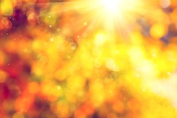 Autumn. Blurred Fall Abstract autumnal background with colorful leaves and sun
