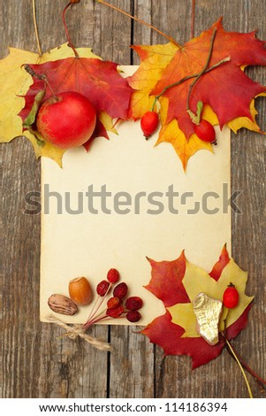 Autumn border - apples and fallen leaves, Thanksgiving day