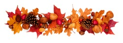 Autumn border of colorful fall leaves, nuts and pine cones. Above view isolated on a white background.