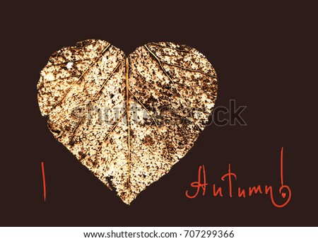 autumn card / dry autumn leaf in the shape of a heart on dark brown background #707299366