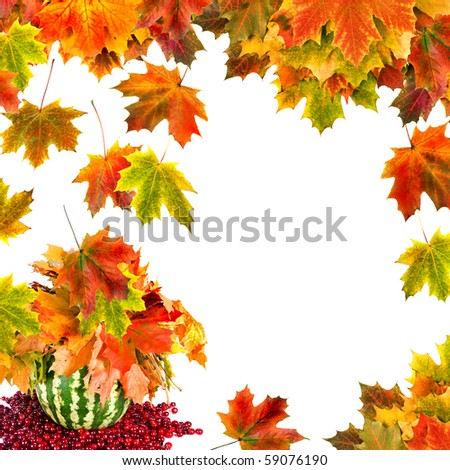 Autumn card of colored leafs isolated on a white background