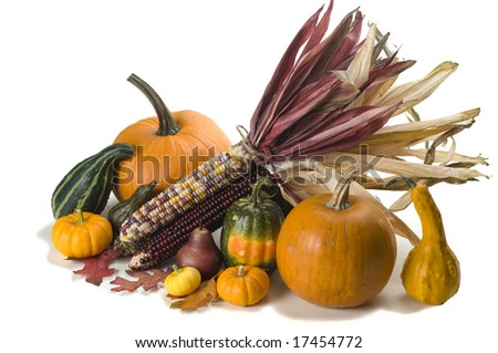 Autumn centerpiece arrangement of Indian corn, pumpkins and assorted gourds isolated on white background