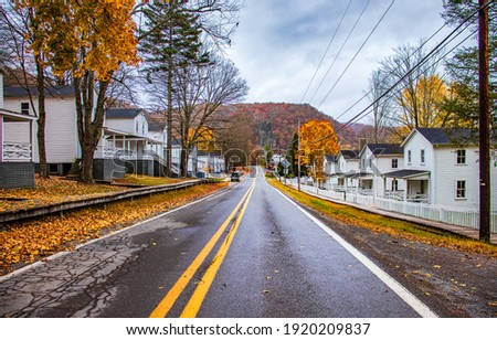 Autumn city road. Autumn road in town. Road in autumn town city. Autumn road in city town