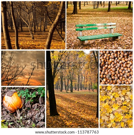 Autumn collage - Collection of autumn photos