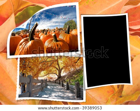 autumn collage with blank photo